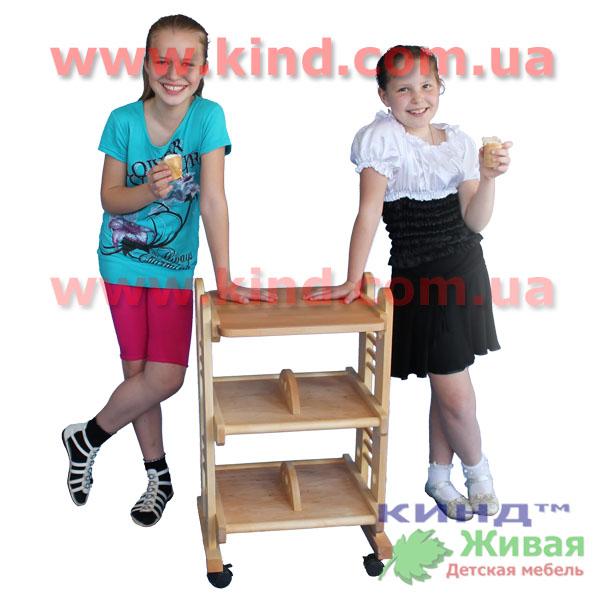 Мебель для двоих детей в детскую комнату